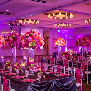 Event/Party Planner