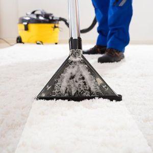 Carpet Cleaning Randwick