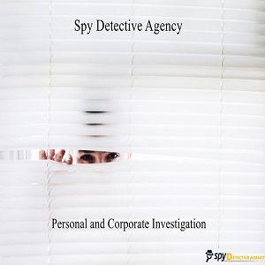 Spy Detectives Noida