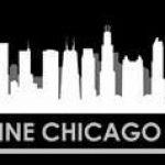 skyline ChicagoLimo